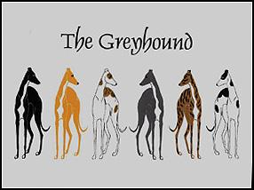 6 Greyhounds